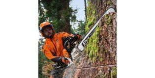 Per lavori forestali