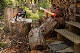 Per il taglio di legna da ardere e la cura del verde